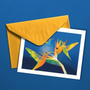 3D Humming Birds Greeting Card