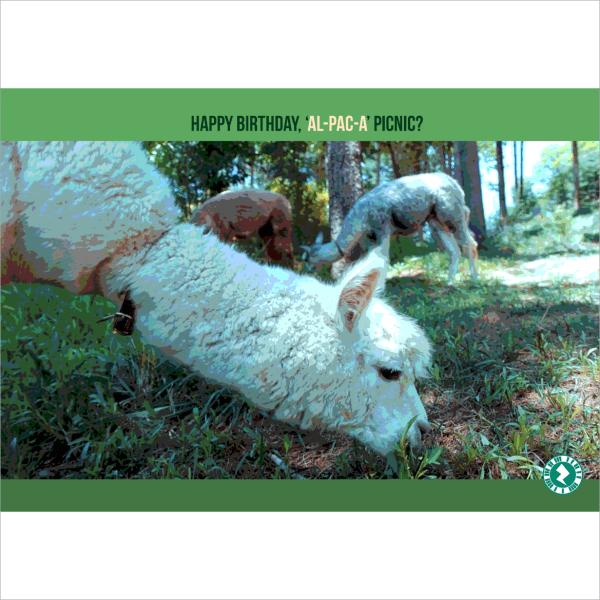 Alpaca Picnic AR Birthday Card