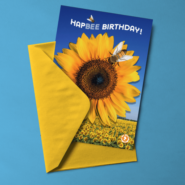 Sunflower Bees HapBee Birthday Card
