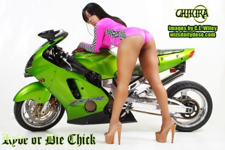 Chikira1.webpromo.CEWiley.thewizsdailydose