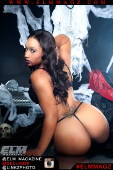 BELLA B6 Linkz Photo ELM Magazine.thewizsdailydose