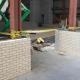 Brick piers at the perimeter of the auditeria
