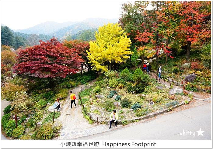 【韓國首爾自由行】晨靜樹木園,楓葉紅了漂亮的世外桃源,如夢似幻的場景【14】