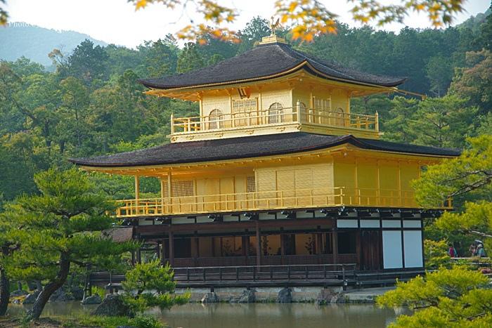 【京都景點】金閣寺,金光閃閃的美景!(23)