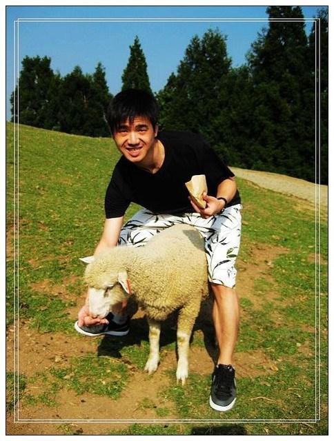 [南投遊PART3–清境農場] @小環妞 幸福足跡