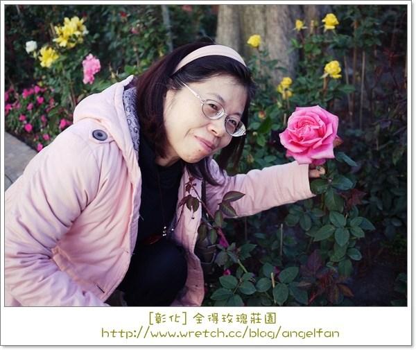 [玩♡彰化]-金字塔下的朵朵玫瑰。全得玫瑰莊園 @小環妞 幸福足跡