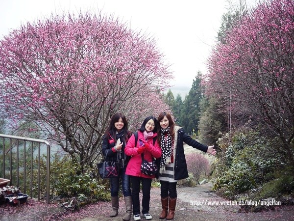 [玩♡桃園]拉拉山~我在台灣遇見雪❤ @小環妞 幸福足跡