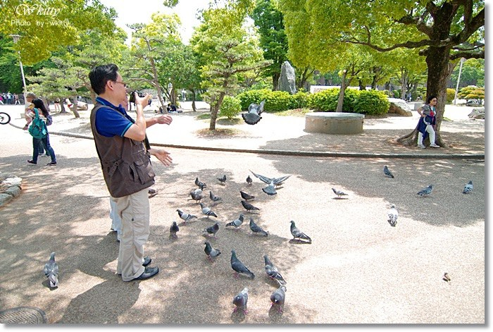 大阪周遊卡,大阪城,大阪天守閣,天守閣 @小環妞 幸福足跡