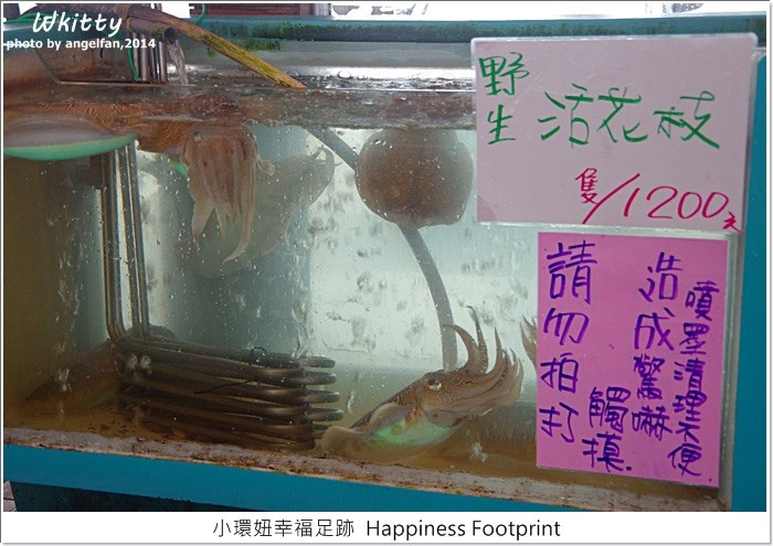 055龍蝦,壽豐鄉美食,花蓮美食,龍蝦海鮮餐廳 @小環妞 幸福足跡