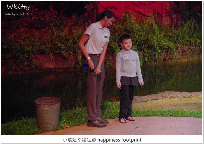 【新加坡景點(19)】夜間動物園,近距離晚上看動物,好刺激的體驗唷! @小環妞 幸福足跡