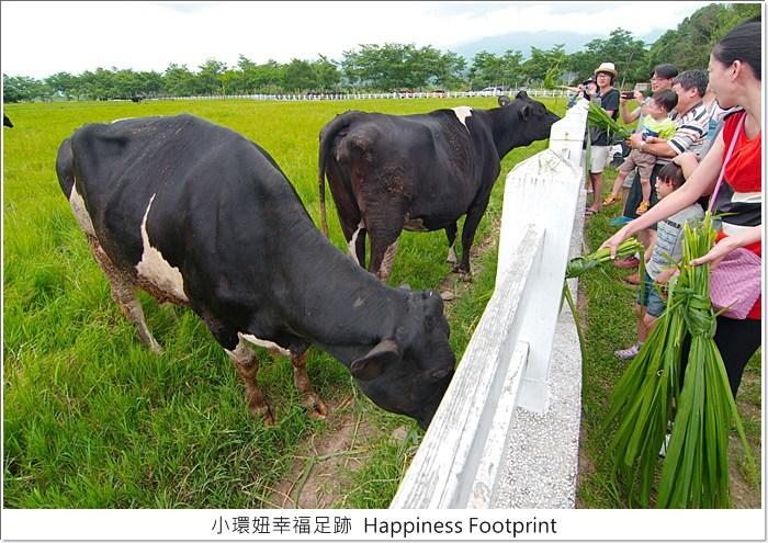 【花蓮景點】瑞穗牧場,免門票,餵牛樂、放風好去處! @小環妞 幸福足跡