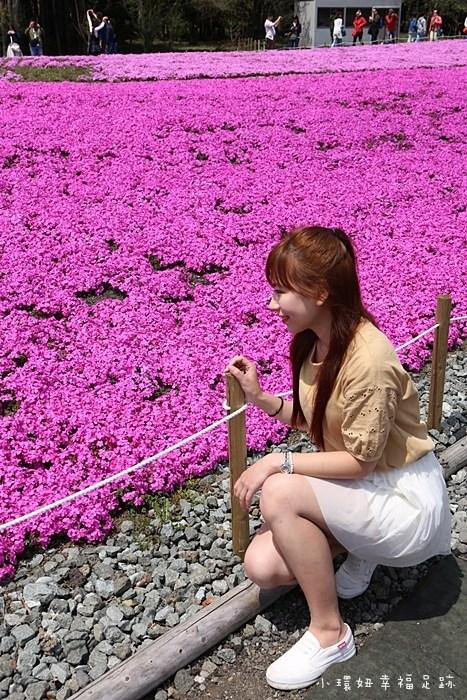 【日本富士芝櫻祭】行程交通/花期花況/門票票價全攻略,超夢幻粉紅色芝櫻花毯搭配富士山(9) @小環妞 幸福足跡