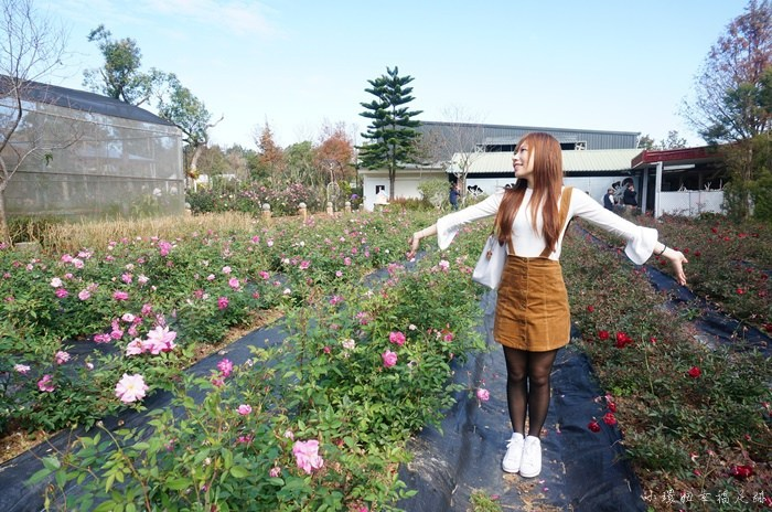 【苗栗三義景點】雅聞香草植物工廠,免費入園旅遊好去處推薦 @小環妞 幸福足跡