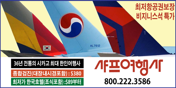 미시간신문배너광고(2019)