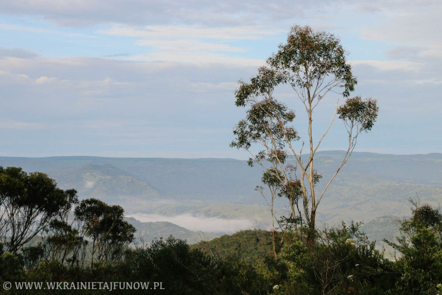 Blue Mountains w Australii