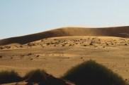 Ponad wydmami unoszą się smugi miałkiego piachu, który wdziera się wszędzie