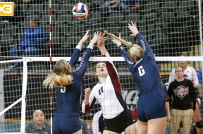 Viterbo Volleyball Gm 3 B