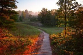 Kohler-Andrae State Park Sheboygan Wisconsin DNR