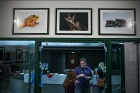 "A gallery reception for National Geographic photographer Joel Sartore's ""Amphibians: Vibrant and Vanishing"" exhibit was held Nov. 7 before his Cultural Enhancement Series presentation."