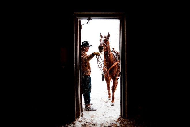 --FEB 14, 2016-- Bowling Green, KY -- Dawson Turner, 17, of Sydney, Arkansas opens the arena door for his horse, Django. Turner, who has been roping for four years, competed in the Calf Roping competition at the Lone Star Championship Rodeo at the L.D Brown Agricultural Exposition Center in Bowling Green, Kentucky on Sunday, February 14th, 2016.  Skyler Ballard (Photo by Skyler Ballard)