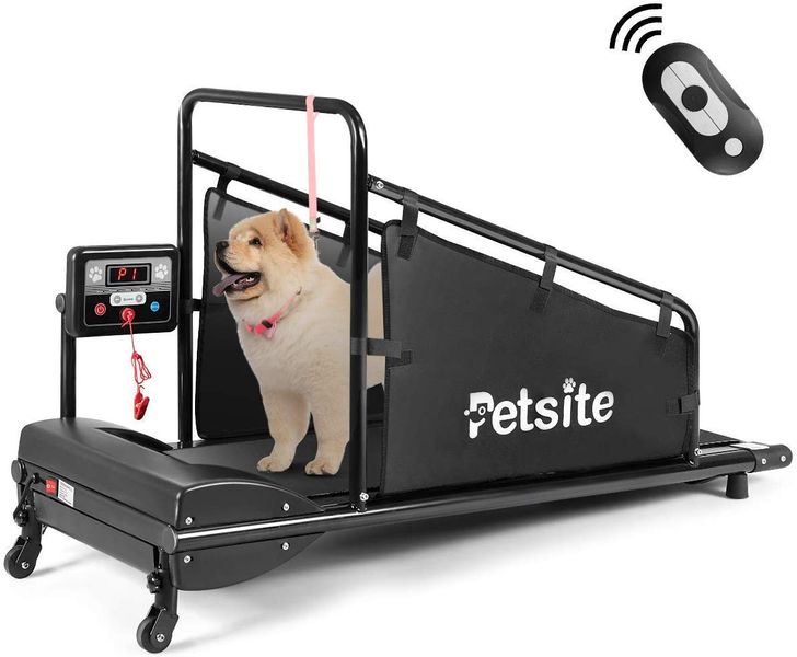 10 Pet Inventions So Creative Owners Are Sure To Buy Them