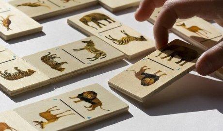 Masowe wymieranie gatunków już się zaczęło