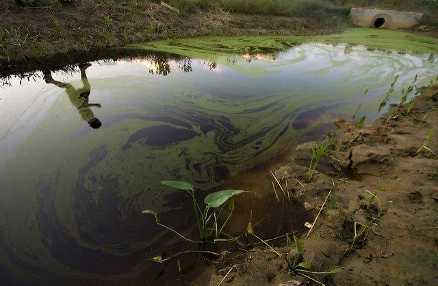 Zanieczyszczenie wody, mórz i oceanów
