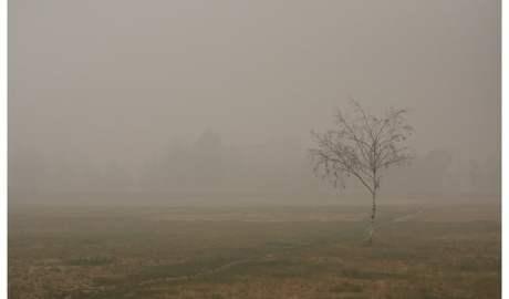Zanieczyszczone powietrze wpływa na zdrowie kobiet w ciąży, dzieci i całe późniejsze życie człowieka