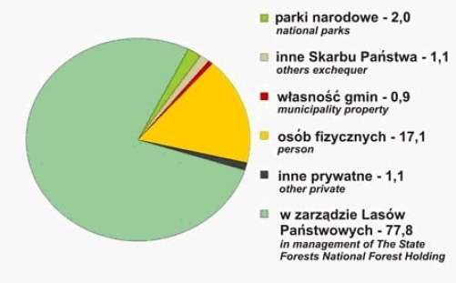 Właściciele lasów w Polsce