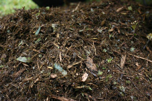 Naukowcy z Politechniki Łódzkiej opracowali agrotkaninę BioEcoFab która ulega całkowitej biodegradacji