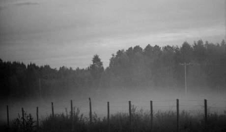 Smog zabija! Gdy wzrasta zanieczyszczenie powietrza, wzrasta liczba hospitalizacji i zgonów