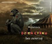 8 czerwca Dzień cyrku bez zwierząt