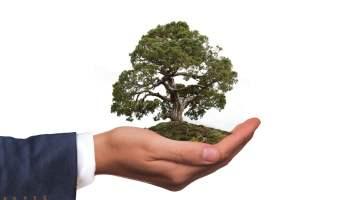 W Polsce przybywa firm wdrażających działania proekologiczne
