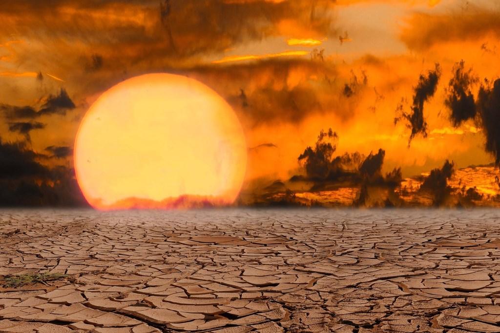 Uczelnie, PAN i ministerstwo klimatu będą wspólnie przeciwdziałać skutkom suszy w Polsce