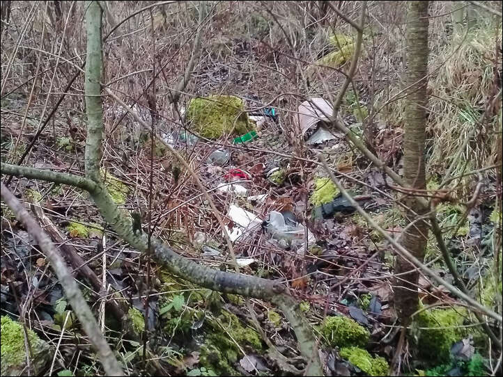 Sprawa dzikich wysypisk w gminie Wleń powraca niczym bumerang