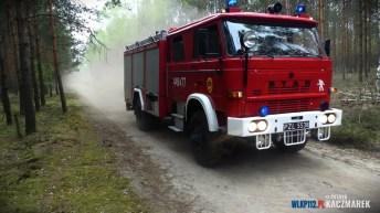 P1140263 (Copy)