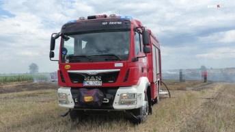 P1140956 (Copy)