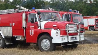 P1140986 (Copy)