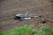 Śmiertelny wypadek koło Łuszkowa (7)