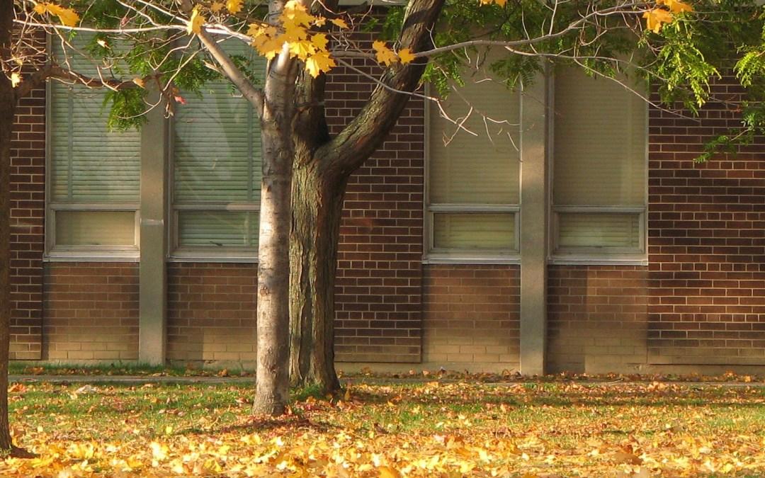 School in the Fall