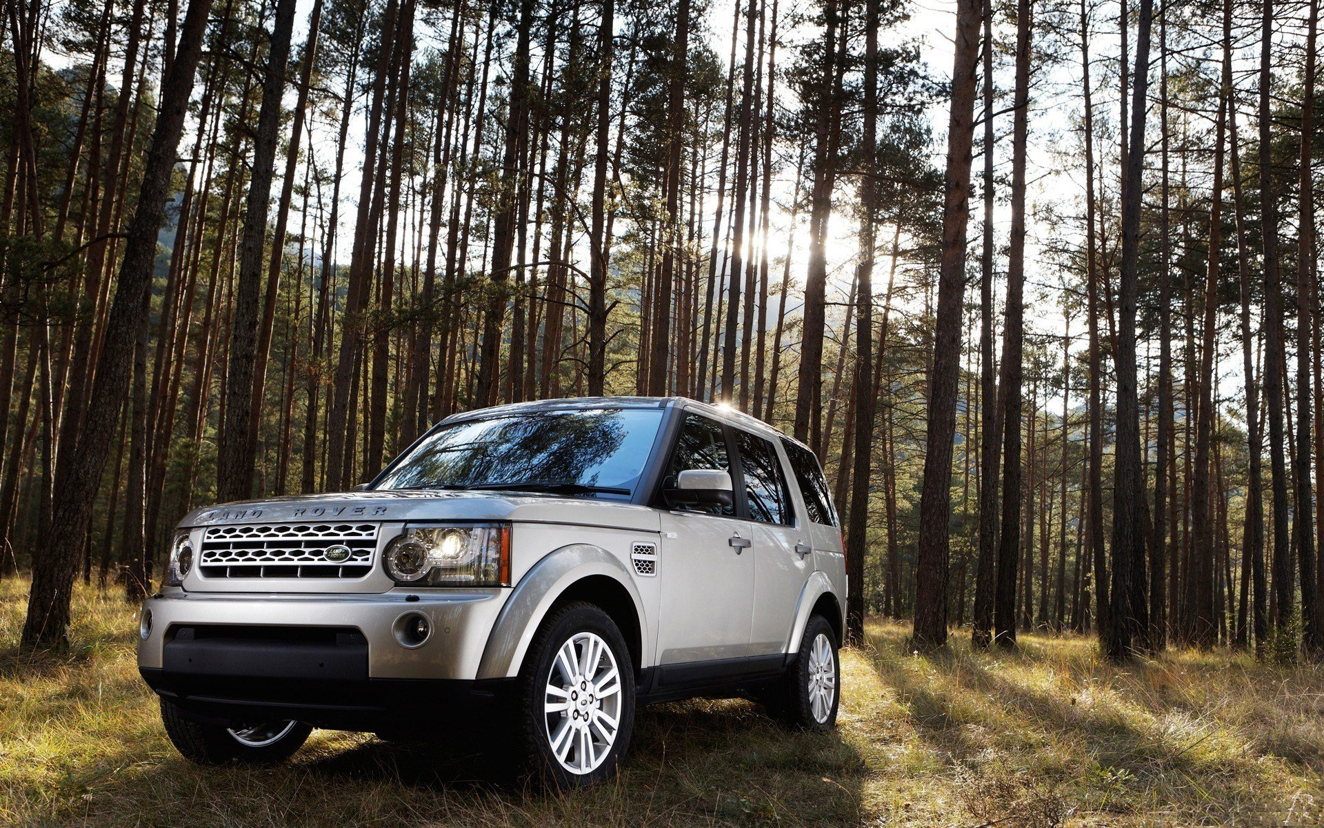 New Land Rover Car In Jungle Hd Wallpaper Hd Wallpapers On This Month
