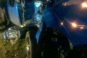 Tree Shaped Hole In Car 2 (11-03-15)
