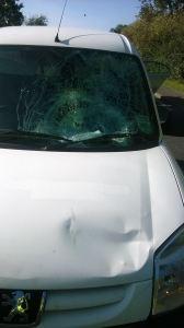 Pedestrian injured in collision with car 28-09-15