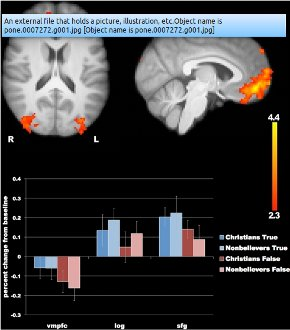 Sam Harris fMRI