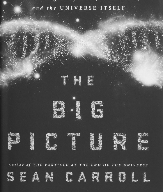 Sean Carrolls The Big Picture Reviewed Why Poetic Naturalism