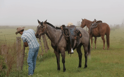 Deseret Ranches via Deseret Ranches