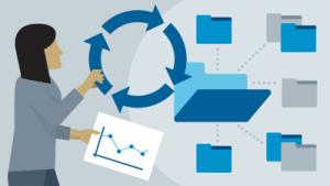 portfolio management systems