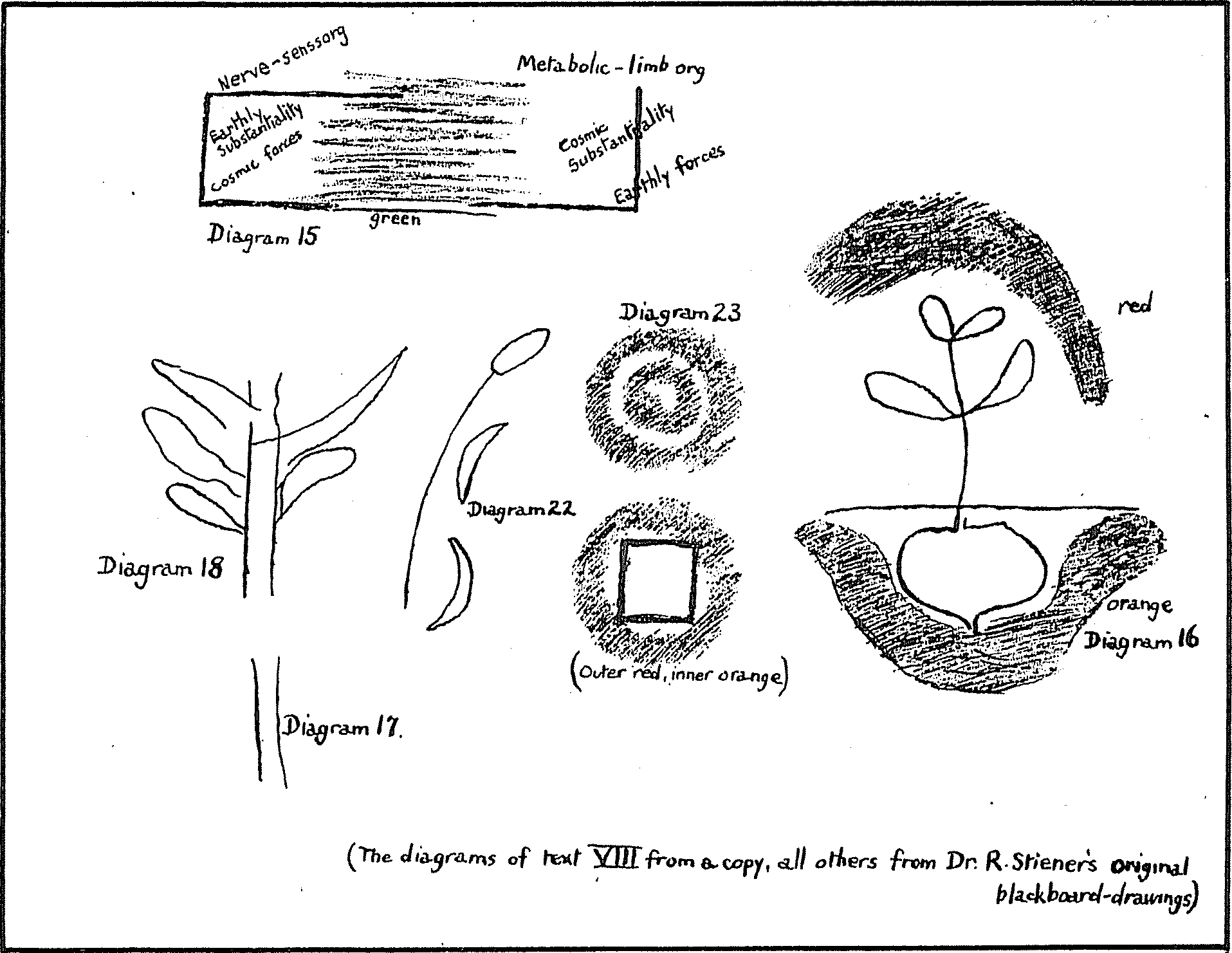 Agriculture Course Lecture Viii