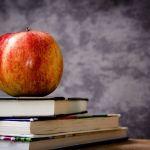 Frühjahrsprogramm 2017 der Kreisvolkshochschule St. Wendel wird an alle Haushalte verteilt