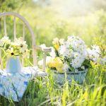 St. Wendeler Land: Tag der offenen Gartentür 2017